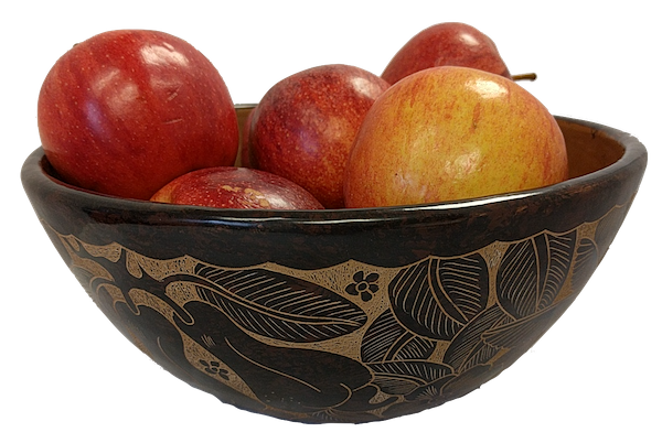 a lovely pottery bowl filled with apples